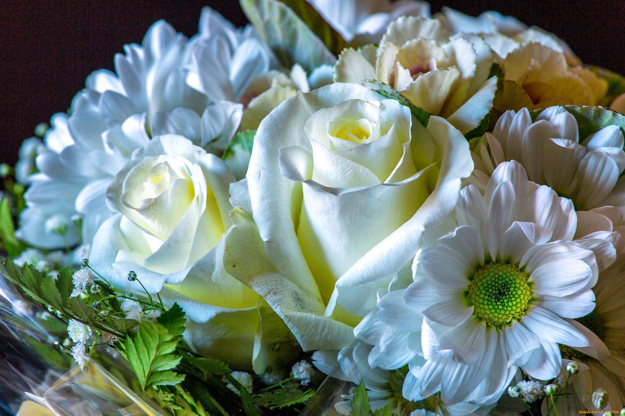 отметить, что картинка букет белых цветов все времена